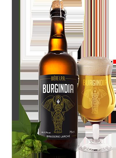 Burgindia I.P.A.